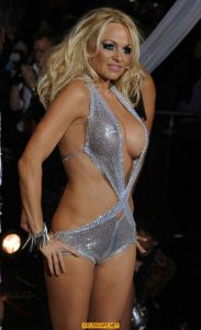 pamela-anderson-see-through-boobs_001