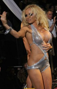 pamela-anderson-see-through-hot